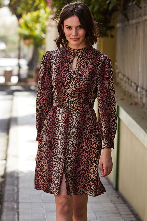 Leopard Print Fit & Flare Dress