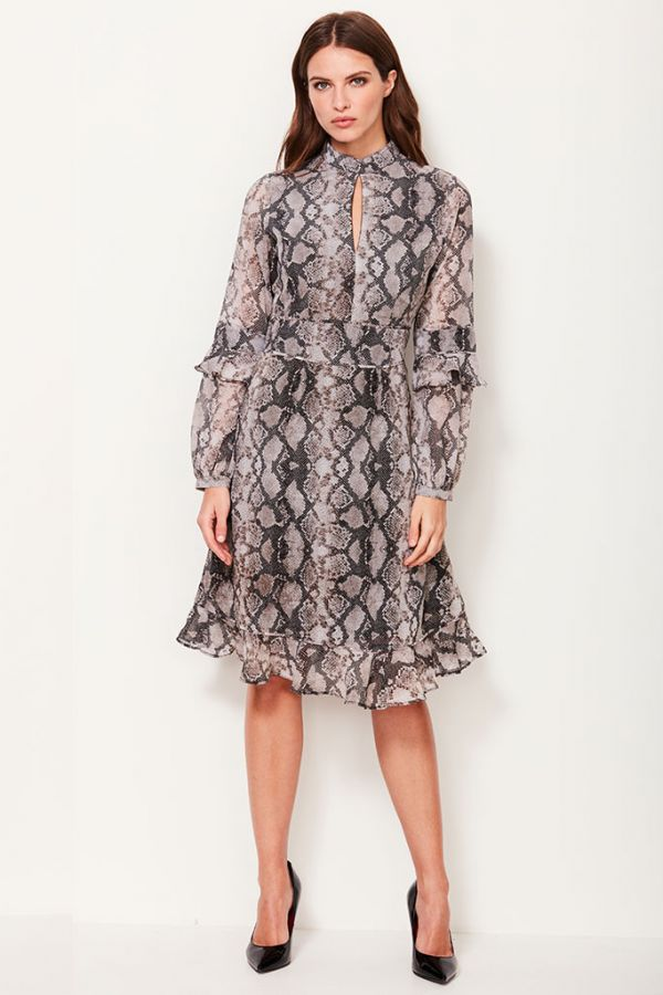 Snake Print Fit & Flare Ruffle Dress